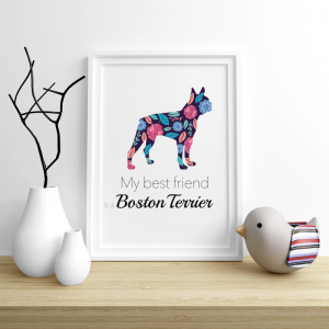 Plakat - Boston Terrier Flowers